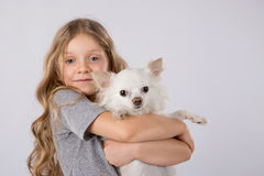 Petite fille avec le chien blanc de chiwawa sur le fond blanc Amitié d'animal familier d'enfants Images stock