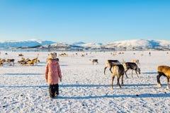 Petite fille avec le renne Images libres de droits