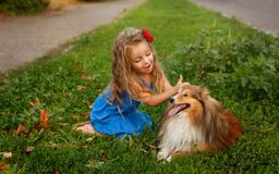 Petite fille avec un chien Sheltie Images libres de droits
