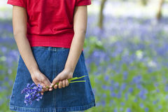 Petite fille avec un groupe de Bluebells Photographie stock