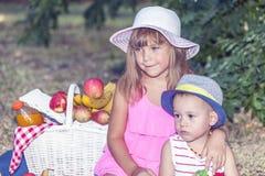 Petite fille avec un petit frère sur un pique-nique Photographie stock