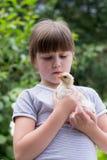 Petite fille avec un petit poulet Image stock