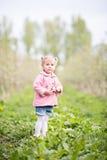Petite fille blonde mignonne se tenant dans le verger et tenant une pomme t Photo libre de droits