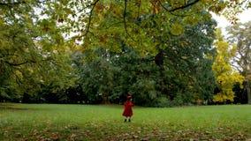 Petite fille courant à travers le champ à sa mère banque de vidéos