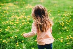 Petite fille courant le long de la pelouse verte avec les pissenlits jaunes, vue arrière Photographie stock libre de droits
