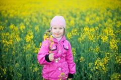Petite fille dans le domaine des fleurs jaunes photos libres de droits