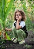 Petite fille dans le maïs photo libre de droits