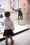 Petite fille dans le musem de zoo Photographie stock