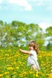 Petite fille dans le pré Image stock