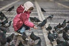 Petite fille dans les pigeons de alimentation d'une place de ville photos stock