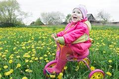 Petite fille de cri conduisant le cycle rose et jaune à travers le pré de floraison de pissenlits de ressort Photo libre de droits