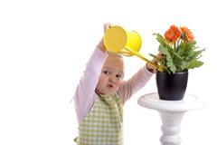 Petite fille de jardinage arrosant les fleurs images libres de droits