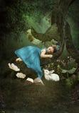 Petite fille dormant dans la forêt photos stock
