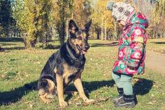 Petite fille drôle jouant avec un chien Photo libre de droits