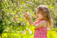Petite fille en parc images libres de droits