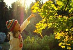 Petite fille en parc d'automne Image libre de droits