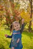 Petite fille en stationnement d'automne Photo stock