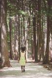 Petite fille entrant dans les bois Photographie stock libre de droits
