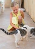 Petite fille et chats Photos stock
