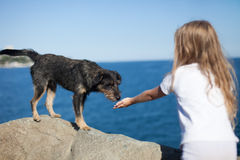 Petite fille et chien Image libre de droits