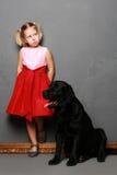 Petite fille et chien dans le studio photographie stock libre de droits