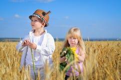 Petite fille et garçon examinant les tournesols jaunes Photographie stock