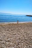 Petite fille et la mer photos libres de droits