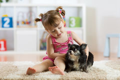 Petite fille et petit chien mignon dans le salon Photos stock