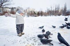Petite fille et pigeons en hiver Photographie stock libre de droits