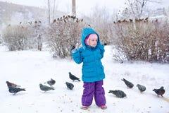 Petite fille et pigeons mignons Photographie stock libre de droits