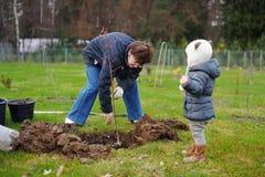 Petite fille et sa grand-mère plantant un arbre Photographie stock