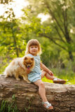 Petite fille et Spitz Photos stock