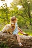 Petite fille et Spitz Image libre de droits