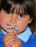 Petite fille et une marguerite Photo stock