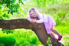 Petite fille grimpant à un arbre Photographie stock libre de droits