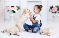 Petite fille jouant avec le chien d'arrêt de chiots Photographie stock libre de droits