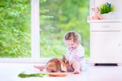 Petite fille jouant avec un lapin Photos libres de droits
