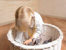 Petite fille jouant avec un panier des chatons Image libre de droits