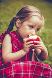 Petite fille mignonne avec des pommes dans une herbe verte Image stock
