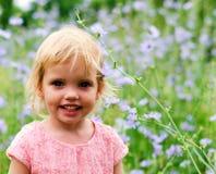 Petite fille mignonne dans une robe rose souriant en parc Image libre de droits