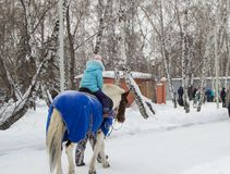 Petite fille montant un cheval pendant l'hiver en parc, amusement pour des enfants Images libres de droits