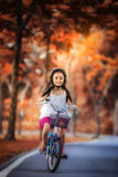 Petite fille montant une bicyclette en parc Images stock