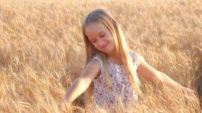 Petite fille pour onduler des mains sur le pré avec le coucher du soleil Jolie fille heureuse dans le domaine au coucher du solei banque de vidéos