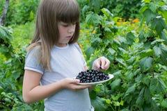 Petite fille près des groseilles d'un buisson Image stock