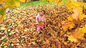 Petite fille qui rit jolie jette des feuilles jaunes dans le parc d'automne banque de vidéos