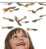 Petite fille regardant des poissons d'aquarium Image stock