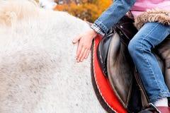 Petite fille s'asseyant à cheval et la frottant Photographie stock