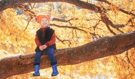 Petite fille s'asseyant sur une branche d'arbre Photographie stock