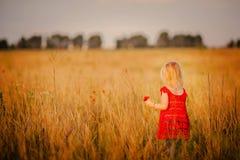 Petite fille sur le pré Images stock