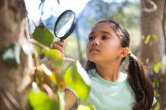 Petite fille tenant la nature l'explorant de loupe Image libre de droits